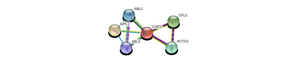 http://string-db.org/version_10/api/image/networkList?limit=0&targetmode=proteins&caller_identity=gene_cards&network_flavor=evidence&identifiers=9606.ENSP00000229922%0d%0a9606.ENSP00000331514%0d%0a9606.ENSP00000298159%0d%0a9606.ENSP00000361423%0d%0a9606.ENSP00000264039%0d%0a9606.ENSP00000427562%0d%0a