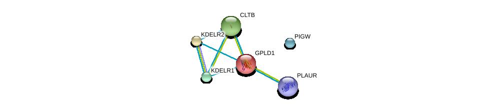http://string-db.org/version_10/api/image/networkList?limit=0&targetmode=proteins&caller_identity=gene_cards&network_flavor=evidence&identifiers=9606.ENSP00000230036%0d%0a9606.ENSP00000258739%0d%0a9606.ENSP00000339328%0d%0a9606.ENSP00000332313%0d%0a9606.ENSP00000309415%0d%0a9606.ENSP00000329471%0d%0a