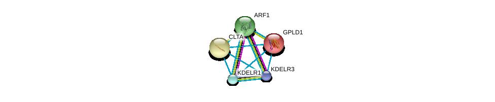 http://string-db.org/version_10/api/image/networkList?limit=0&targetmode=proteins&caller_identity=gene_cards&network_flavor=evidence&identifiers=9606.ENSP00000230036%0d%0a9606.ENSP00000272102%0d%0a9606.ENSP00000272102%0d%0a9606.ENSP00000386918%0d%0a9606.ENSP00000329471%0d%0a9606.ENSP00000242285%0d%0a