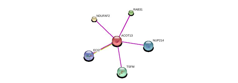 http://string-db.org/version_10/api/image/networkList?limit=0&targetmode=proteins&caller_identity=gene_cards&network_flavor=evidence&identifiers=9606.ENSP00000230048%0d%0a9606.ENSP00000352400%0d%0a9606.ENSP00000313877%0d%0a9606.ENSP00000304565%0d%0a9606.ENSP00000369461%0d%0a9606.ENSP00000296597%0d%0a