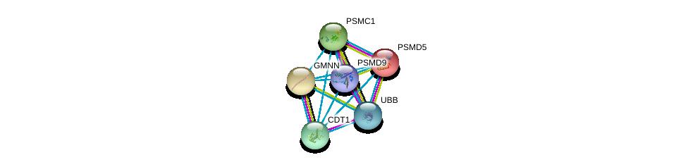 http://string-db.org/version_10/api/image/networkList?limit=0&targetmode=proteins&caller_identity=gene_cards&network_flavor=evidence&identifiers=9606.ENSP00000230056%0d%0a9606.ENSP00000301019%0d%0a9606.ENSP00000261303%0d%0a9606.ENSP00000304697%0d%0a9606.ENSP00000440485%0d%0a9606.ENSP00000210313%0d%0a