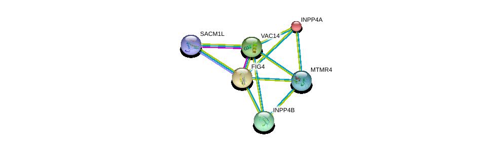 http://string-db.org/version_10/api/image/networkList?limit=0&targetmode=proteins&caller_identity=gene_cards&network_flavor=evidence&identifiers=9606.ENSP00000230124%0d%0a9606.ENSP00000261776%0d%0a9606.ENSP00000074304%0d%0a9606.ENSP00000373713%0d%0a9606.ENSP00000262992%0d%0a9606.ENSP00000325285%0d%0a