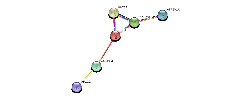 http://string-db.org/version_10/api/image/networkList?limit=0&targetmode=proteins&caller_identity=gene_cards&network_flavor=evidence&identifiers=9606.ENSP00000230124%0d%0a9606.ENSP00000261776%0d%0a9606.ENSP00000264380%0d%0a9606.ENSP00000273398%0d%0a9606.ENSP00000265070%0d%0a9606.ENSP00000312442%0d%0a