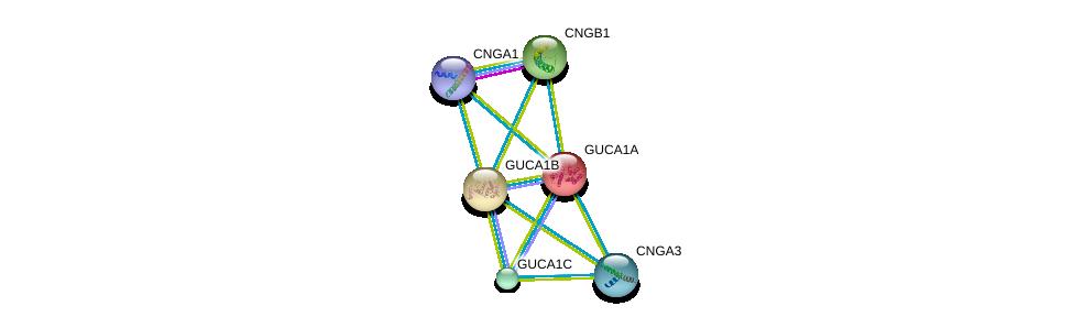 http://string-db.org/version_10/api/image/networkList?limit=0&targetmode=proteins&caller_identity=gene_cards&network_flavor=evidence&identifiers=9606.ENSP00000230361%0d%0a9606.ENSP00000261047%0d%0a9606.ENSP00000251102%0d%0a9606.ENSP00000053469%0d%0a9606.ENSP00000384264%0d%0a9606.ENSP00000272602%0d%0a