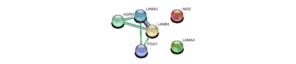http://string-db.org/version_10/api/image/networkList?limit=0&targetmode=proteins&caller_identity=gene_cards&network_flavor=evidence&identifiers=9606.ENSP00000230538%0d%0a9606.ENSP00000400365%0d%0a9606.ENSP00000452120%0d%0a9606.ENSP00000222399%0d%0a9606.ENSP00000216286%0d%0a9606.ENSP00000368678%0d%0a