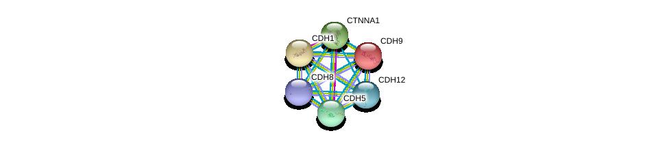 http://string-db.org/version_10/api/image/networkList?limit=0&targetmode=proteins&caller_identity=gene_cards&network_flavor=evidence&identifiers=9606.ENSP00000231021%0d%0a9606.ENSP00000462701%0d%0a9606.ENSP00000304669%0d%0a9606.ENSP00000371689%0d%0a9606.ENSP00000261769%0d%0a9606.ENSP00000344115%0d%0a