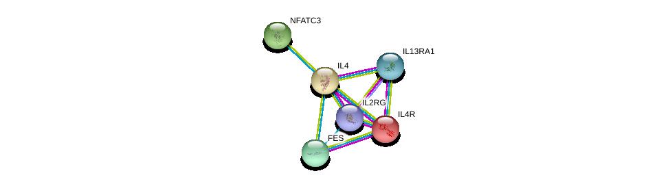 http://string-db.org/version_10/api/image/networkList?limit=0&targetmode=proteins&caller_identity=gene_cards&network_flavor=evidence&identifiers=9606.ENSP00000231449%0d%0a9606.ENSP00000170630%0d%0a9606.ENSP00000363318%0d%0a9606.ENSP00000360730%0d%0a9606.ENSP00000331504%0d%0a9606.ENSP00000300659%0d%0a