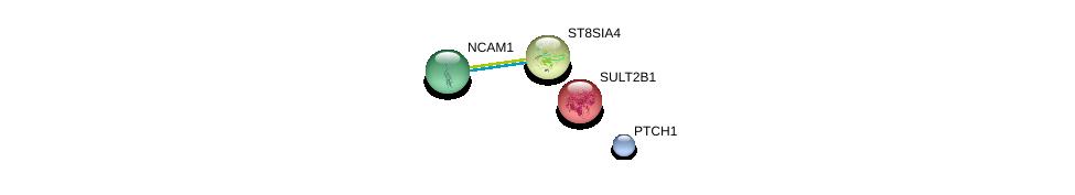 http://string-db.org/version_10/api/image/networkList?limit=0&targetmode=proteins&caller_identity=gene_cards&network_flavor=evidence&identifiers=9606.ENSP00000231461%0d%0a9606.ENSP00000318472%0d%0a9606.ENSP00000201586%0d%0a9606.ENSP00000332353%0d%0a