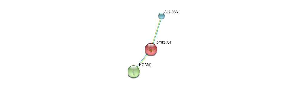 http://string-db.org/version_10/api/image/networkList?limit=0&targetmode=proteins&caller_identity=gene_cards&network_flavor=evidence&identifiers=9606.ENSP00000231461%0d%0a9606.ENSP00000318472%0d%0a9606.ENSP00000358565%0d%0a
