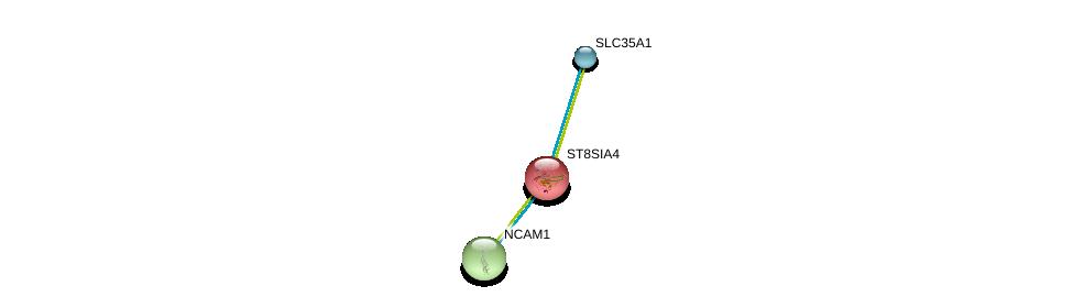 http://string-db.org/version_10/api/image/networkList?limit=0&targetmode=proteins&caller_identity=gene_cards&network_flavor=evidence&identifiers=9606.ENSP00000231461%0d%0a9606.ENSP00000358565%0d%0a9606.ENSP00000318472%0d%0a