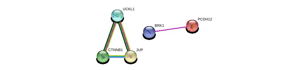 http://string-db.org/version_10/api/image/networkList?limit=0&targetmode=proteins&caller_identity=gene_cards&network_flavor=evidence&identifiers=9606.ENSP00000231484%0d%0a9606.ENSP00000432472%0d%0a9606.ENSP00000346155%0d%0a9606.ENSP00000346155%0d%0a9606.ENSP00000344456%0d%0a9606.ENSP00000311113%0d%0a