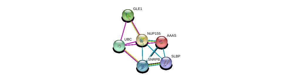 http://string-db.org/version_10/api/image/networkList?limit=0&targetmode=proteins&caller_identity=gene_cards&network_flavor=evidence&identifiers=9606.ENSP00000231498%0d%0a9606.ENSP00000344818%0d%0a9606.ENSP00000308622%0d%0a9606.ENSP00000417686%0d%0a9606.ENSP00000209873%0d%0a9606.ENSP00000412566%0d%0a