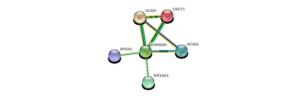 http://string-db.org/version_10/api/image/networkList?limit=0&targetmode=proteins&caller_identity=gene_cards&network_flavor=evidence&identifiers=9606.ENSP00000231887%0d%0a9606.ENSP00000222214%0d%0a9606.ENSP00000196371%0d%0a9606.ENSP00000233057%0d%0a9606.ENSP00000233710%0d%0a9606.ENSP00000236850%0d%0a