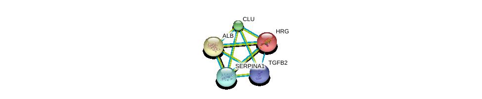 http://string-db.org/version_10/api/image/networkList?limit=0&targetmode=proteins&caller_identity=gene_cards&network_flavor=evidence&identifiers=9606.ENSP00000232003%0d%0a9606.ENSP00000348068%0d%0a9606.ENSP00000315130%0d%0a9606.ENSP00000315130%0d%0a9606.ENSP00000355896%0d%0a9606.ENSP00000295897%0d%0a