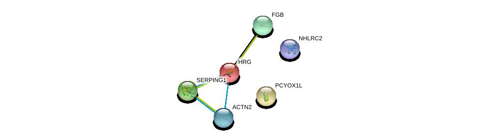 http://string-db.org/version_10/api/image/networkList?limit=0&targetmode=proteins&caller_identity=gene_cards&network_flavor=evidence&identifiers=9606.ENSP00000232003%0d%0a9606.ENSP00000358307%0d%0a9606.ENSP00000355537%0d%0a9606.ENSP00000278407%0d%0a9606.ENSP00000306099%0d%0a9606.ENSP00000274569%0d%0a