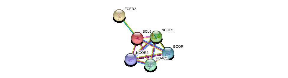 http://string-db.org/version_10/api/image/networkList?limit=0&targetmode=proteins&caller_identity=gene_cards&network_flavor=evidence&identifiers=9606.ENSP00000232014%0d%0a9606.ENSP00000384018%0d%0a9606.ENSP00000367705%0d%0a9606.ENSP00000362649%0d%0a9606.ENSP00000268712%0d%0a9606.ENSP00000264072%0d%0a