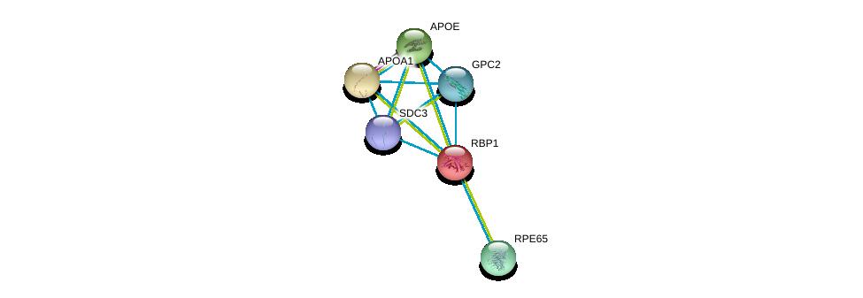 http://string-db.org/version_10/api/image/networkList?limit=0&targetmode=proteins&caller_identity=gene_cards&network_flavor=evidence&identifiers=9606.ENSP00000232219%0d%0a9606.ENSP00000236850%0d%0a9606.ENSP00000252486%0d%0a9606.ENSP00000262340%0d%0a9606.ENSP00000292377%0d%0a9606.ENSP00000344468%0d%0a
