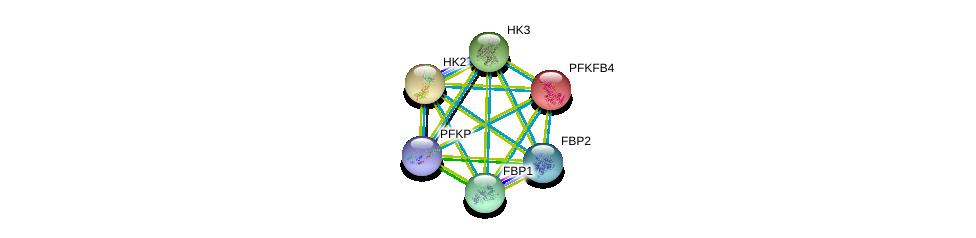 http://string-db.org/version_10/api/image/networkList?limit=0&targetmode=proteins&caller_identity=gene_cards&network_flavor=evidence&identifiers=9606.ENSP00000232375%0d%0a9606.ENSP00000290573%0d%0a9606.ENSP00000292432%0d%0a9606.ENSP00000364475%0d%0a9606.ENSP00000364486%0d%0a9606.ENSP00000370517%0d%0a