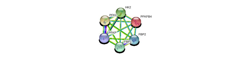 http://string-db.org/version_10/api/image/networkList?limit=0&targetmode=proteins&caller_identity=gene_cards&network_flavor=evidence&identifiers=9606.ENSP00000232375%0d%0a9606.ENSP00000290573%0d%0a9606.ENSP00000370517%0d%0a9606.ENSP00000364475%0d%0a9606.ENSP00000269848%0d%0a9606.ENSP00000364486%0d%0a