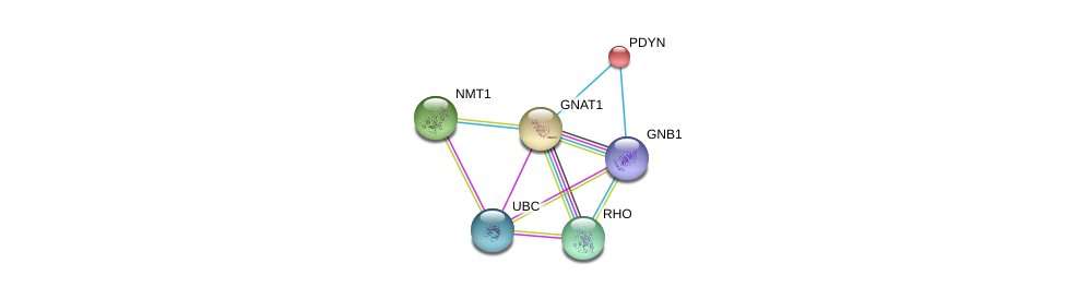 http://string-db.org/version_10/api/image/networkList?limit=0&targetmode=proteins&caller_identity=gene_cards&network_flavor=evidence&identifiers=9606.ENSP00000232461%0d%0a9606.ENSP00000367869%0d%0a9606.ENSP00000296271%0d%0a9606.ENSP00000344818%0d%0a9606.ENSP00000217305%0d%0a9606.ENSP00000258960%0d%0a