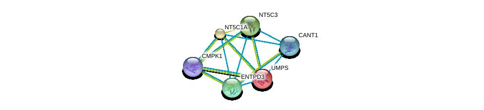 http://string-db.org/version_10/api/image/networkList?limit=0&targetmode=proteins&caller_identity=gene_cards&network_flavor=evidence&identifiers=9606.ENSP00000232607%0d%0a9606.ENSP00000360939%0d%0a9606.ENSP00000301825%0d%0a9606.ENSP00000242210%0d%0a9606.ENSP00000235628%0d%0a9606.ENSP00000307674%0d%0a