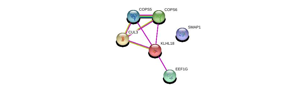 http://string-db.org/version_10/api/image/networkList?limit=0&targetmode=proteins&caller_identity=gene_cards&network_flavor=evidence&identifiers=9606.ENSP00000232766%0d%0a9606.ENSP00000350512%0d%0a9606.ENSP00000304102%0d%0a9606.ENSP00000331901%0d%0a9606.ENSP00000264414%0d%0a9606.ENSP00000359484%0d%0a
