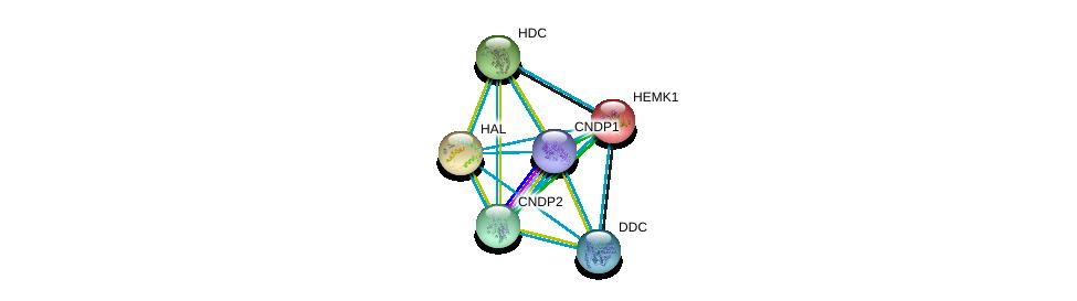 http://string-db.org/version_10/api/image/networkList?limit=0&targetmode=proteins&caller_identity=gene_cards&network_flavor=evidence&identifiers=9606.ENSP00000232854%0d%0a9606.ENSP00000261208%0d%0a9606.ENSP00000267845%0d%0a9606.ENSP00000325548%0d%0a9606.ENSP00000350616%0d%0a9606.ENSP00000351682%0d%0a