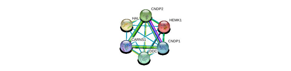 http://string-db.org/version_10/api/image/networkList?limit=0&targetmode=proteins&caller_identity=gene_cards&network_flavor=evidence&identifiers=9606.ENSP00000232854%0d%0a9606.ENSP00000351682%0d%0a9606.ENSP00000350616%0d%0a9606.ENSP00000389009%0d%0a9606.ENSP00000261208%0d%0a9606.ENSP00000325548%0d%0a