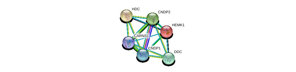 http://string-db.org/version_10/api/image/networkList?limit=0&targetmode=proteins&caller_identity=gene_cards&network_flavor=evidence&identifiers=9606.ENSP00000232854%0d%0a9606.ENSP00000389009%0d%0a9606.ENSP00000351682%0d%0a9606.ENSP00000350616%0d%0a9606.ENSP00000325548%0d%0a9606.ENSP00000267845%0d%0a