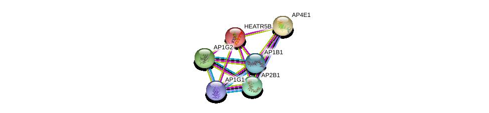 http://string-db.org/version_10/api/image/networkList?limit=0&targetmode=proteins&caller_identity=gene_cards&network_flavor=evidence&identifiers=9606.ENSP00000233099%0d%0a9606.ENSP00000312442%0d%0a9606.ENSP00000377148%0d%0a9606.ENSP00000261842%0d%0a9606.ENSP00000314414%0d%0a9606.ENSP00000350199%0d%0a