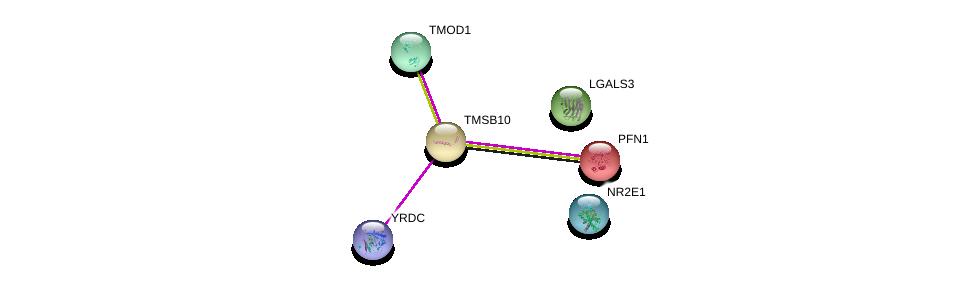 http://string-db.org/version_10/api/image/networkList?limit=0&targetmode=proteins&caller_identity=gene_cards&network_flavor=evidence&identifiers=9606.ENSP00000233143%0d%0a9606.ENSP00000225655%0d%0a9606.ENSP00000362135%0d%0a9606.ENSP00000254301%0d%0a9606.ENSP00000259365%0d%0a9606.ENSP00000357982%0d%0a