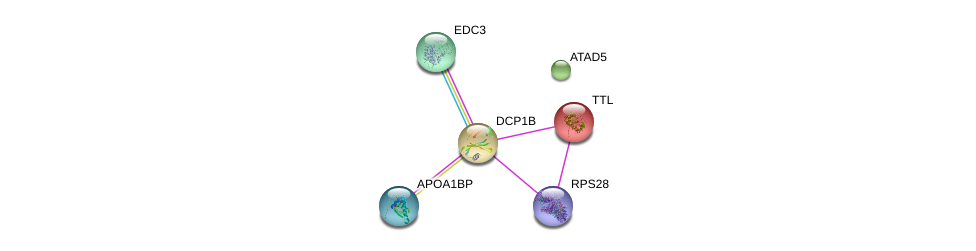 http://string-db.org/version_10/api/image/networkList?limit=0&targetmode=proteins&caller_identity=gene_cards&network_flavor=evidence&identifiers=9606.ENSP00000233336%0d%0a9606.ENSP00000280665%0d%0a9606.ENSP00000472469%0d%0a9606.ENSP00000313171%0d%0a9606.ENSP00000320503%0d%0a9606.ENSP00000357218%0d%0a
