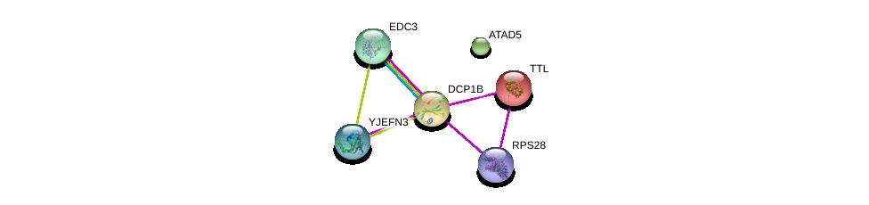 http://string-db.org/version_10/api/image/networkList?limit=0&targetmode=proteins&caller_identity=gene_cards&network_flavor=evidence&identifiers=9606.ENSP00000233336%0d%0a9606.ENSP00000280665%0d%0a9606.ENSP00000472469%0d%0a9606.ENSP00000313171%0d%0a9606.ENSP00000320503%0d%0a9606.ENSP00000426964%0d%0a