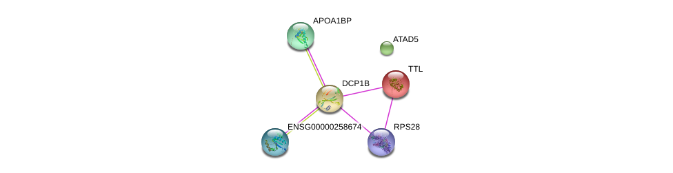 http://string-db.org/version_10/api/image/networkList?limit=0&targetmode=proteins&caller_identity=gene_cards&network_flavor=evidence&identifiers=9606.ENSP00000233336%0d%0a9606.ENSP00000280665%0d%0a9606.ENSP00000472469%0d%0a9606.ENSP00000313171%0d%0a9606.ENSP00000452549%0d%0a9606.ENSP00000357218%0d%0a