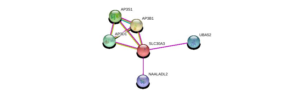 http://string-db.org/version_10/api/image/networkList?limit=0&targetmode=proteins&caller_identity=gene_cards&network_flavor=evidence&identifiers=9606.ENSP00000233535%0d%0a9606.ENSP00000404705%0d%0a9606.ENSP00000344055%0d%0a9606.ENSP00000325369%0d%0a9606.ENSP00000255194%0d%0a9606.ENSP00000388107%0d%0a