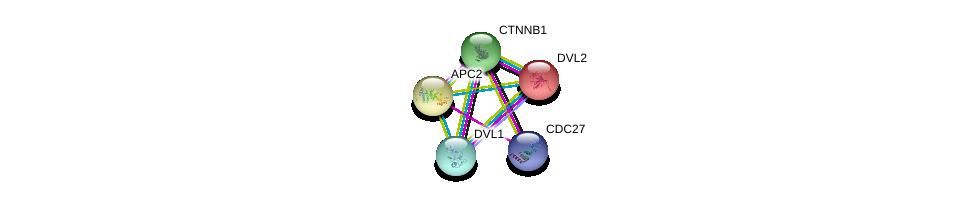 http://string-db.org/version_10/api/image/networkList?limit=0&targetmode=proteins&caller_identity=gene_cards&network_flavor=evidence&identifiers=9606.ENSP00000233607%0d%0a9606.ENSP00000344456%0d%0a9606.ENSP00000434614%0d%0a9606.ENSP00000005340%0d%0a9606.ENSP00000368169%0d%0a9606.ENSP00000368169%0d%0a