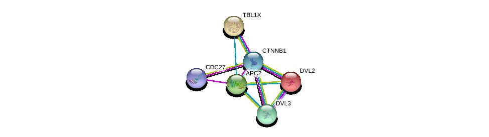 http://string-db.org/version_10/api/image/networkList?limit=0&targetmode=proteins&caller_identity=gene_cards&network_flavor=evidence&identifiers=9606.ENSP00000233607%0d%0a9606.ENSP00000344456%0d%0a9606.ENSP00000434614%0d%0a9606.ENSP00000217964%0d%0a9606.ENSP00000005340%0d%0a9606.ENSP00000316054%0d%0a