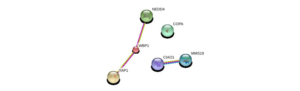 http://string-db.org/version_10/api/image/networkList?limit=0&targetmode=proteins&caller_identity=gene_cards&network_flavor=evidence&identifiers=9606.ENSP00000233615%0d%0a9606.ENSP00000418287%0d%0a9606.ENSP00000359818%0d%0a9606.ENSP00000282441%0d%0a9606.ENSP00000345530%0d%0a9606.ENSP00000357048%0d%0a