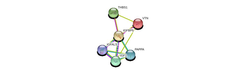 http://string-db.org/version_10/api/image/networkList?limit=0&targetmode=proteins&caller_identity=gene_cards&network_flavor=evidence&identifiers=9606.ENSP00000233813%0d%0a9606.ENSP00000302665%0d%0a9606.ENSP00000330658%0d%0a9606.ENSP00000416683%0d%0a9606.ENSP00000226218%0d%0a9606.ENSP00000260356%0d%0a
