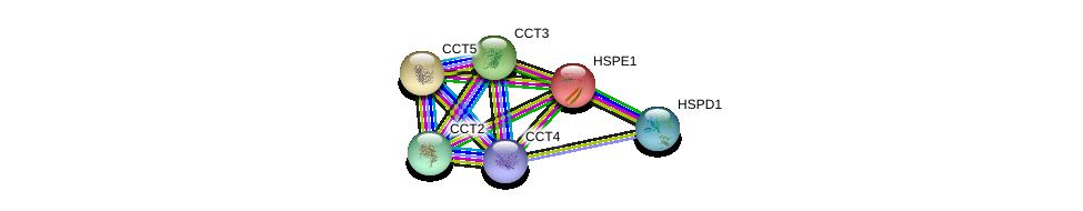 http://string-db.org/version_10/api/image/networkList?limit=0&targetmode=proteins&caller_identity=gene_cards&network_flavor=evidence&identifiers=9606.ENSP00000233893%0d%0a9606.ENSP00000340019%0d%0a9606.ENSP00000295688%0d%0a9606.ENSP00000280326%0d%0a9606.ENSP00000377958%0d%0a9606.ENSP00000299300%0d%0a