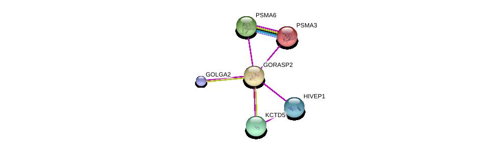 http://string-db.org/version_10/api/image/networkList?limit=0&targetmode=proteins&caller_identity=gene_cards&network_flavor=evidence&identifiers=9606.ENSP00000234160%0d%0a9606.ENSP00000301738%0d%0a9606.ENSP00000416097%0d%0a9606.ENSP00000261479%0d%0a9606.ENSP00000368698%0d%0a9606.ENSP00000216455%0d%0a