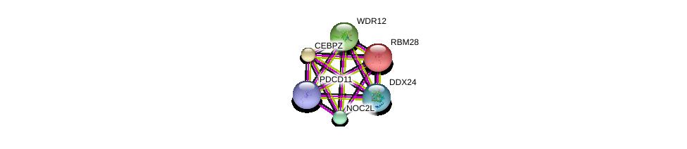 http://string-db.org/version_10/api/image/networkList?limit=0&targetmode=proteins&caller_identity=gene_cards&network_flavor=evidence&identifiers=9606.ENSP00000234170%0d%0a9606.ENSP00000317992%0d%0a9606.ENSP00000358812%0d%0a9606.ENSP00000223073%0d%0a9606.ENSP00000261015%0d%0a9606.ENSP00000328690%0d%0a