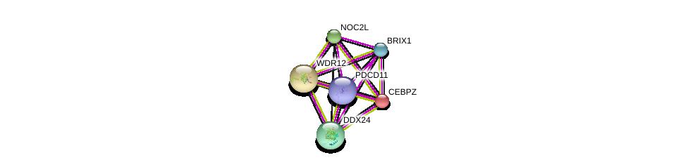 http://string-db.org/version_10/api/image/networkList?limit=0&targetmode=proteins&caller_identity=gene_cards&network_flavor=evidence&identifiers=9606.ENSP00000234170%0d%0a9606.ENSP00000317992%0d%0a9606.ENSP00000358812%0d%0a9606.ENSP00000261015%0d%0a9606.ENSP00000328690%0d%0a9606.ENSP00000338862%0d%0a