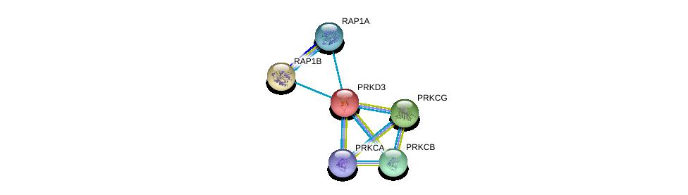 http://string-db.org/version_10/api/image/networkList?limit=0&targetmode=proteins&caller_identity=gene_cards&network_flavor=evidence&identifiers=9606.ENSP00000234179%0d%0a9606.ENSP00000250559%0d%0a9606.ENSP00000348786%0d%0a9606.ENSP00000263431%0d%0a9606.ENSP00000408695%0d%0a9606.ENSP00000305355%0d%0a