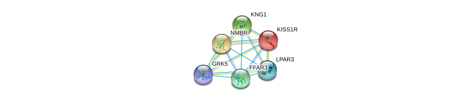 http://string-db.org/version_10/api/image/networkList?limit=0&targetmode=proteins&caller_identity=gene_cards&network_flavor=evidence&identifiers=9606.ENSP00000234371%0d%0a9606.ENSP00000265023%0d%0a9606.ENSP00000258042%0d%0a9606.ENSP00000376609%0d%0a9606.ENSP00000359643%0d%0a9606.ENSP00000328230%0d%0a