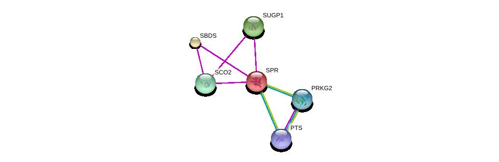 http://string-db.org/version_10/api/image/networkList?limit=0&targetmode=proteins&caller_identity=gene_cards&network_flavor=evidence&identifiers=9606.ENSP00000234454%0d%0a9606.ENSP00000246868%0d%0a9606.ENSP00000247001%0d%0a9606.ENSP00000252785%0d%0a9606.ENSP00000264399%0d%0a9606.ENSP00000280362%0d%0a