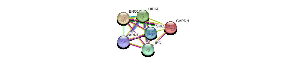 http://string-db.org/version_10/api/image/networkList?limit=0&targetmode=proteins&caller_identity=gene_cards&network_flavor=evidence&identifiers=9606.ENSP00000234590%0d%0a9606.ENSP00000344818%0d%0a9606.ENSP00000229239%0d%0a9606.ENSP00000350941%0d%0a9606.ENSP00000338018%0d%0a9606.ENSP00000351407%0d%0a