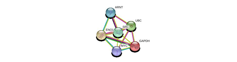 http://string-db.org/version_10/api/image/networkList?limit=0&targetmode=proteins&caller_identity=gene_cards&network_flavor=evidence&identifiers=9606.ENSP00000234590%0d%0a9606.ENSP00000344818%0d%0a9606.ENSP00000229239%0d%0a9606.ENSP00000350941%0d%0a9606.ENSP00000351407%0d%0a9606.ENSP00000367207%0d%0a