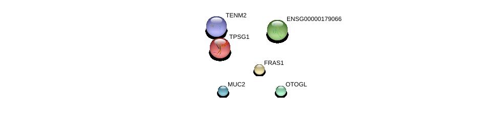 http://string-db.org/version_10/api/image/networkList?limit=0&targetmode=proteins&caller_identity=gene_cards&network_flavor=evidence&identifiers=9606.ENSP00000234798%0d%0a9606.ENSP00000429430%0d%0a9606.ENSP00000415183%0d%0a9606.ENSP00000264895%0d%0a9606.ENSP00000325519%0d%0a9606.ENSP00000400895%0d%0a