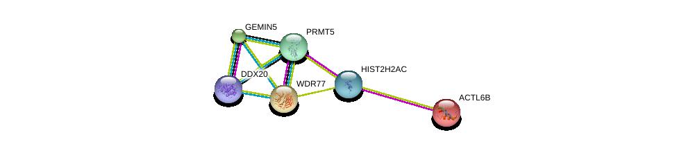 http://string-db.org/version_10/api/image/networkList?limit=0&targetmode=proteins&caller_identity=gene_cards&network_flavor=evidence&identifiers=9606.ENSP00000235090%0d%0a9606.ENSP00000319169%0d%0a9606.ENSP00000332194%0d%0a9606.ENSP00000160382%0d%0a9606.ENSP00000285873%0d%0a9606.ENSP00000358716%0d%0a